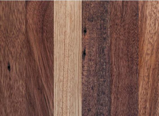 exoticke dreviny portfolio_paletky