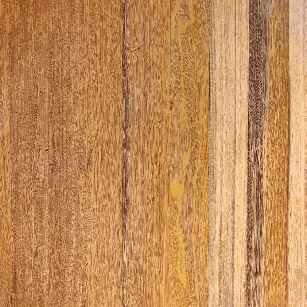 Mix exotických dřevin bilinga