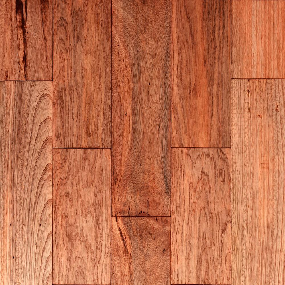 Mix exotických dřevin mahagon
